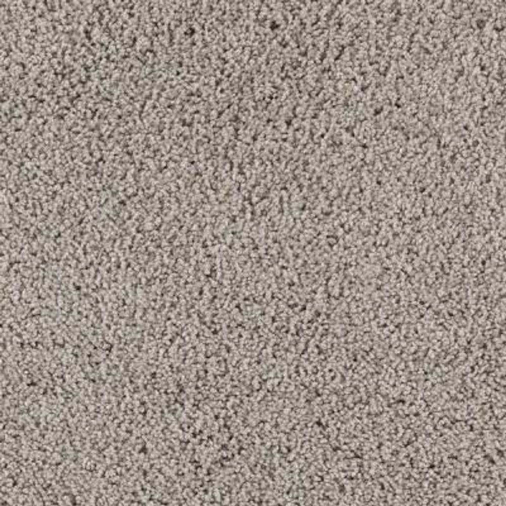 Lifeproof Carpet Sample Ballet Ribbon Color Mineral