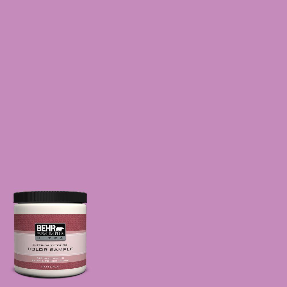 8 oz. #P110-4 Rock Star Pink Interior/Exterior Paint Sample