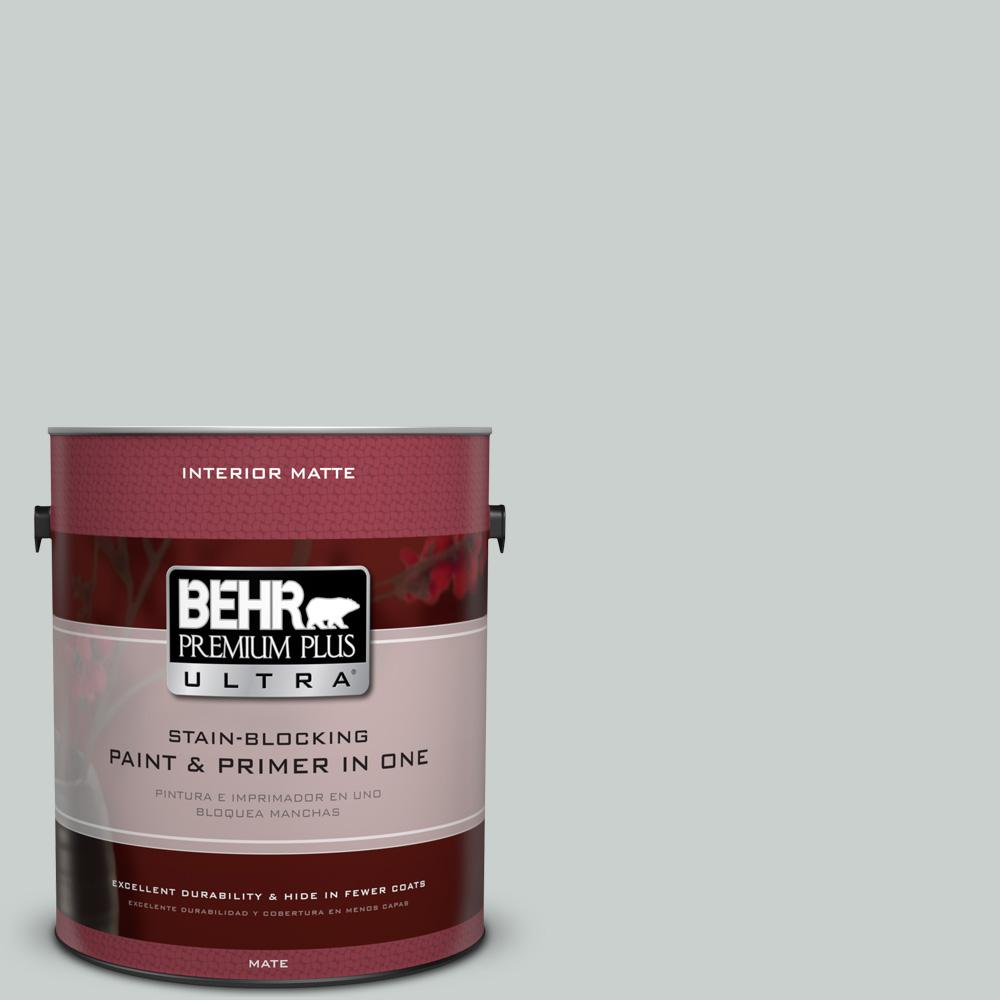 1 gal. #HDC-MD-06G Sparkling Silver Matte Interior Paint