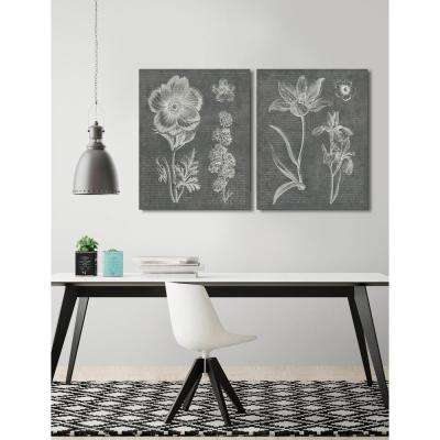 28 in. x 22 in. 'Eden Spring I Gray' by Wild Apple Fine Art Wrapped Canvas Print Wall Art