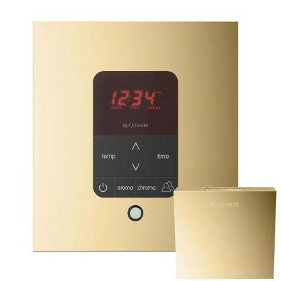 iTempo Plus Control with AromaSteam Steam Head Square for Steam Bath Generator in Polished Brass
