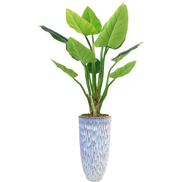 Laura Ashley 51.5 in. Philodendron Erubescens Green Emerald in Resin Planter