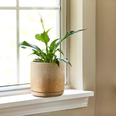 Sherry 6 in. Dia Gold Ceramic Planter