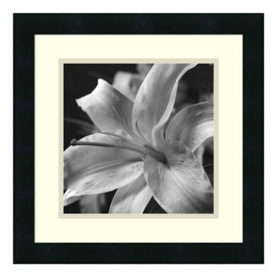 16 in. W x 16 in. H 'Pure Lily' by Gaetano Art Group Printed Framed Wall Art