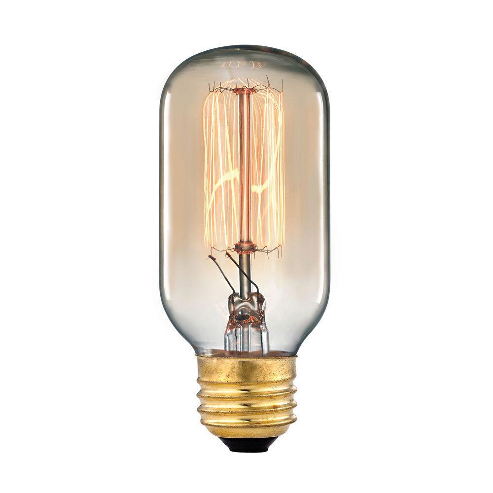 Titan Lighting Ogden Collection 60 Watt Incandescent T6 Medium Base Vintage Filament  Light Bulb