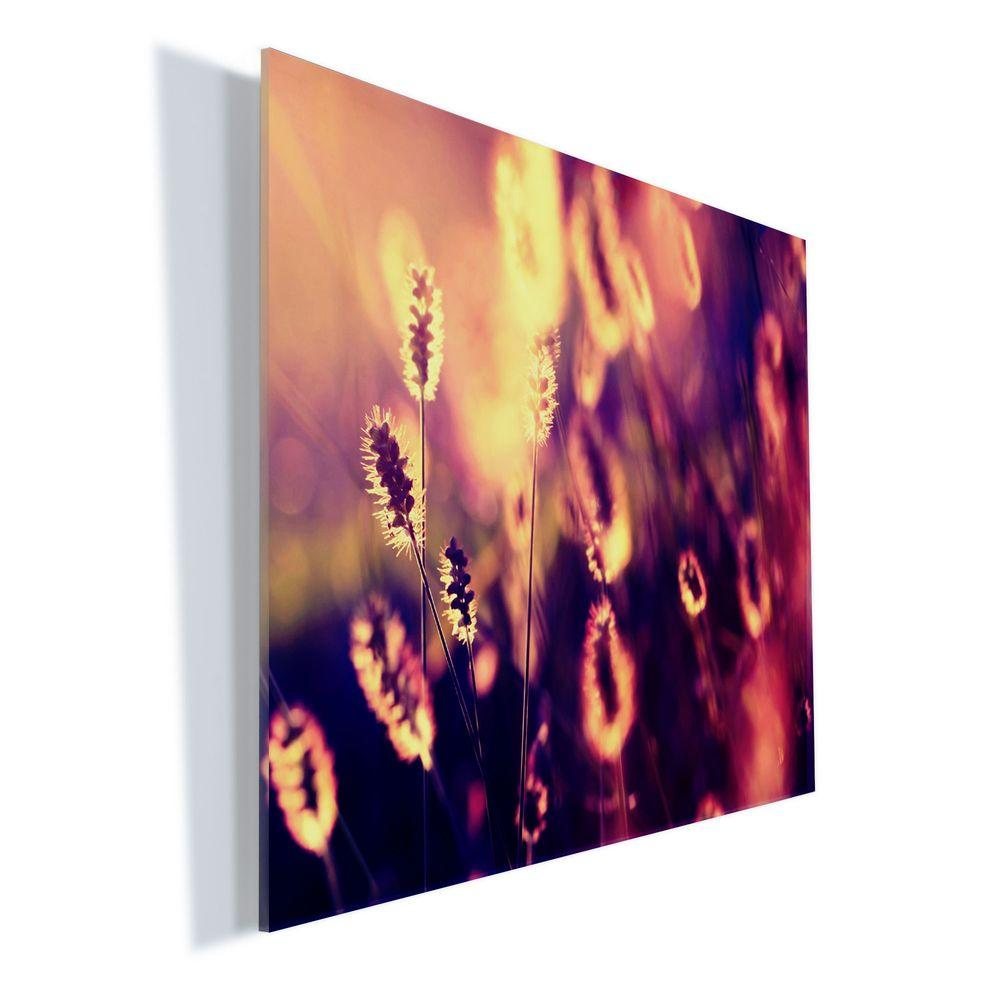 """Trademark Fine Art 18 in. x 24 in. """"Let them Shine"""" by Beata Czyzowska Young Printed Acrylic Wall Art"""