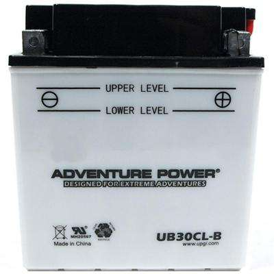 Conventional Wet Pack 12- Volt 30 Ah Capacity D Terminal Battery