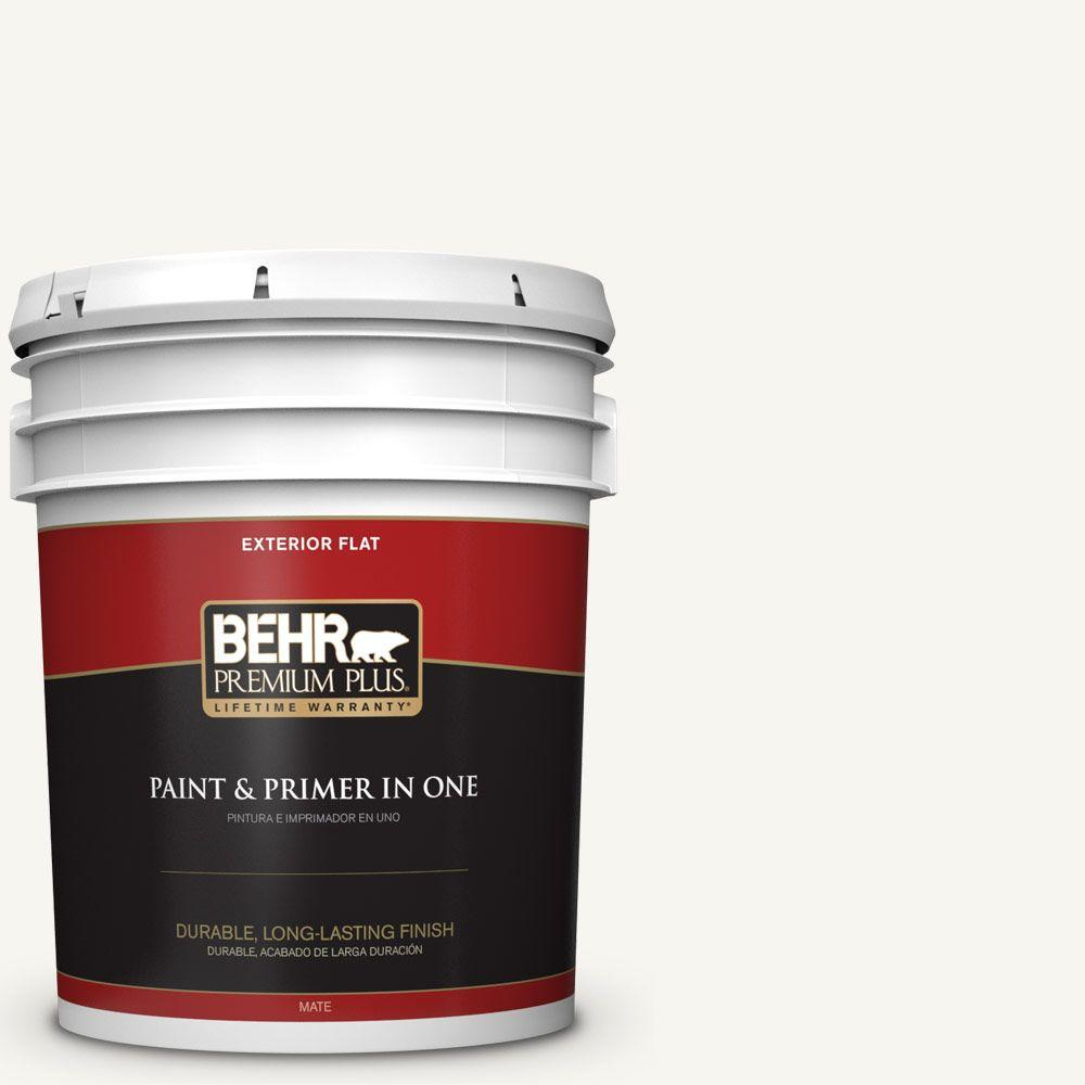 5 gal. #HDC-WR16-01 Snow Day Flat Exterior Paint