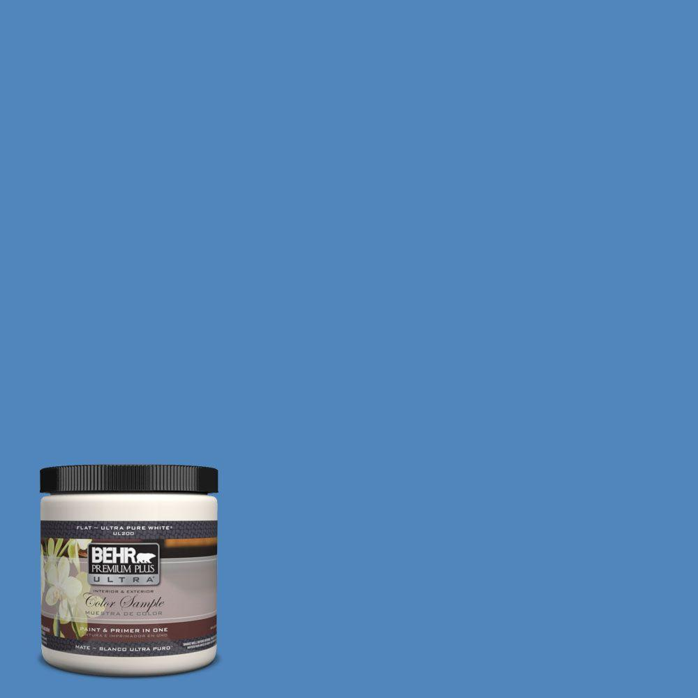 BEHR Premium Plus Ultra 8 oz. #570B-6 Handsome Hue Interior/Exterior Paint Sample