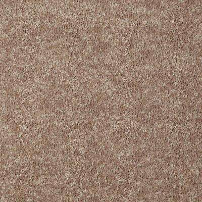 Carpet Sample - Alpine 12 - In Color Insight 8 in. x 8 in.