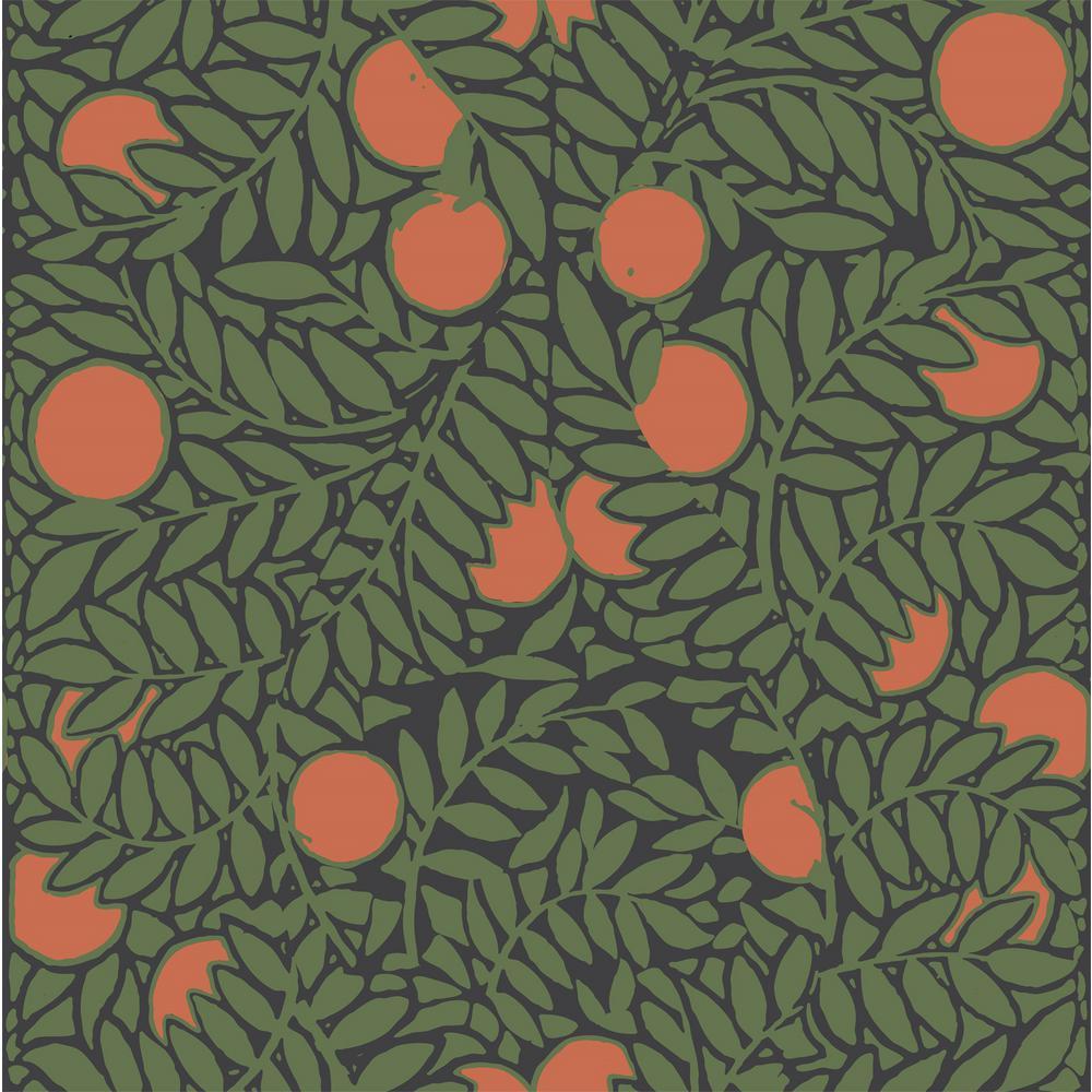 Debut Collection Orange Grove in Forest/Orange Premium Matte Wallpaper