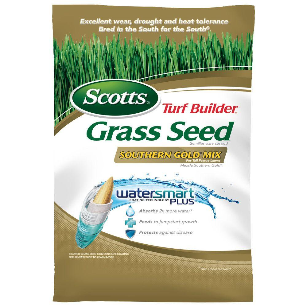 40 lb. Southern Gold Grass Seed