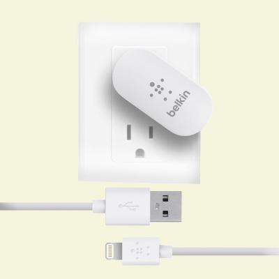 2.1-Amp Lightning Wall Charger for Apple iPhone 5, iPad 4th Gen with Retina Display and iPad Mini - White