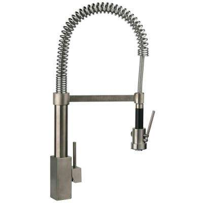 Dax Single-Handle Pull-Down Sprayer Kitchen Faucet with High-Arc Spring Spout in Brushed Nickel