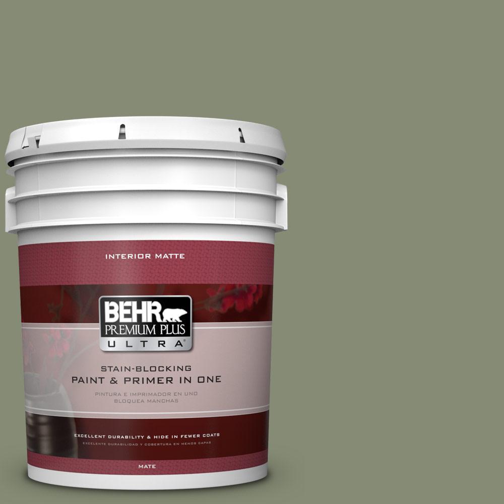 BEHR Premium Plus Ultra 5 gal. #PPU10-17 Aloe Thorn Flat/Matte Interior Paint