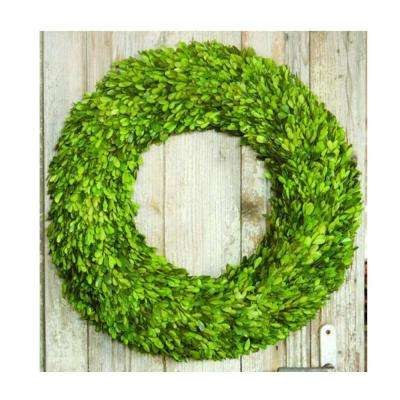 12 in. dia. Preserved Boxwood Wreath in Green