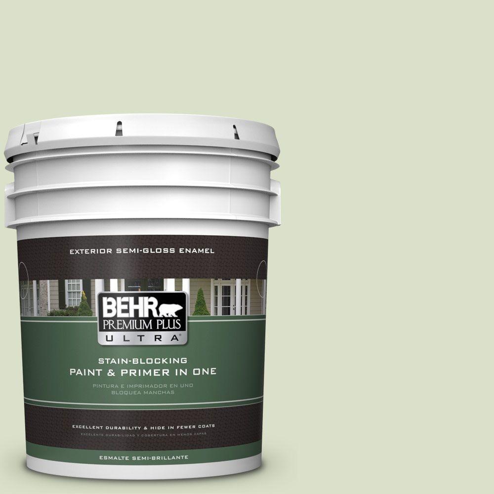 5-gal. #420E-2 Palm Breeze Semi-Gloss Enamel Exterior Paint