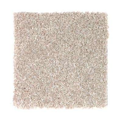 Carpet Sample - Superiority II - Color Less Brown Texture 8 in. x 8 in.