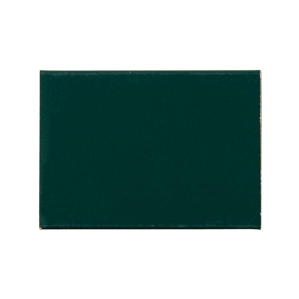 Storm Door Color Sample Forest Green
