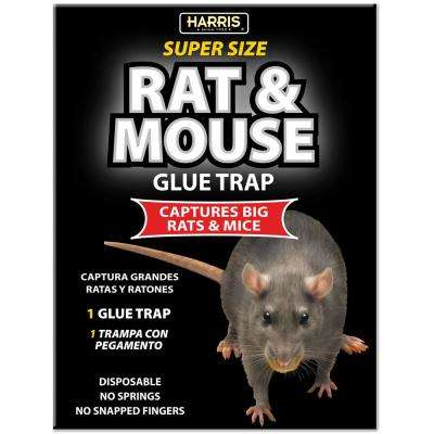 Rat and Mouse Glue Trap - Super Size with Lure