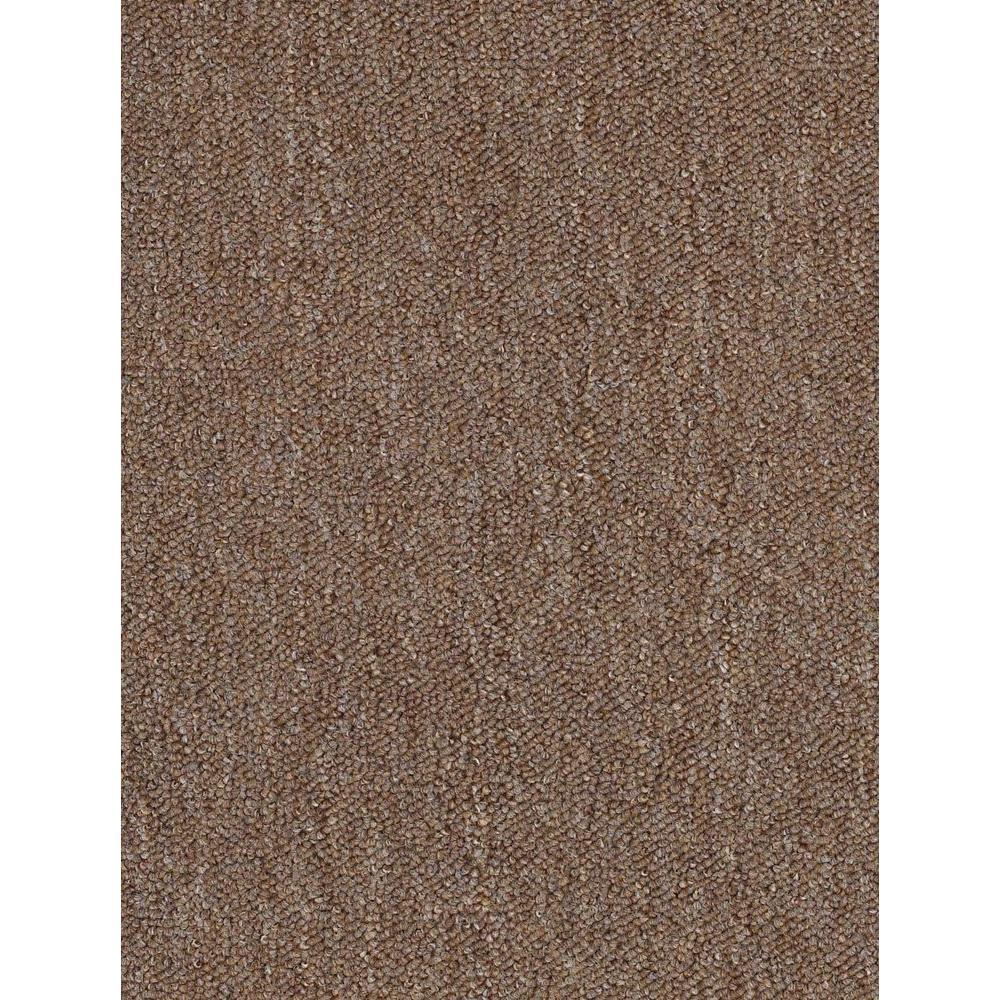 TrafficMASTER Viking - Color Buckwheat Loop 12 ft. Carpet