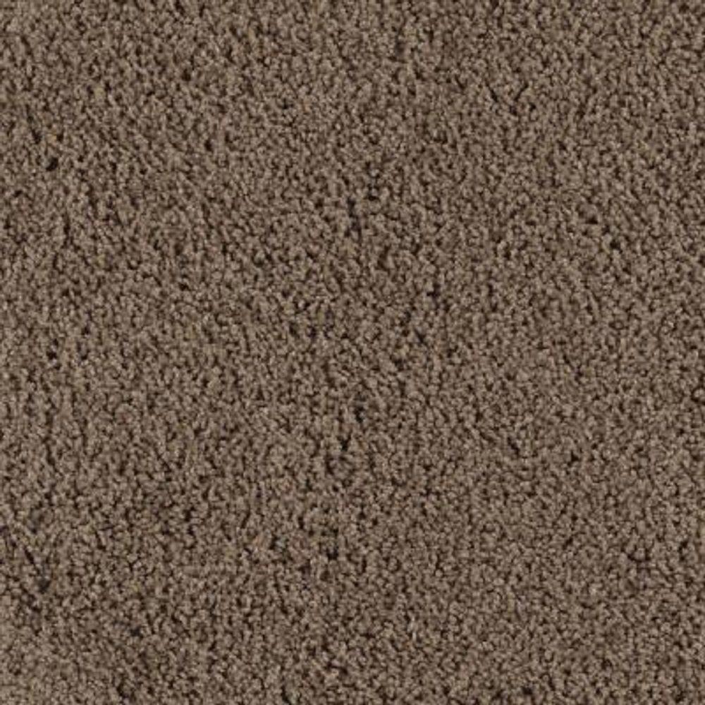 LifeProof Carpet Sample