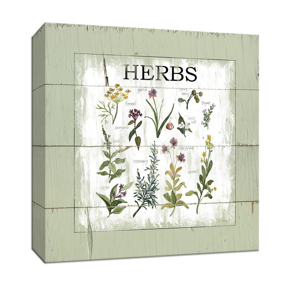 15 in. x 15 in. ''Shiplap Herbs'' By Canvas Wall Art