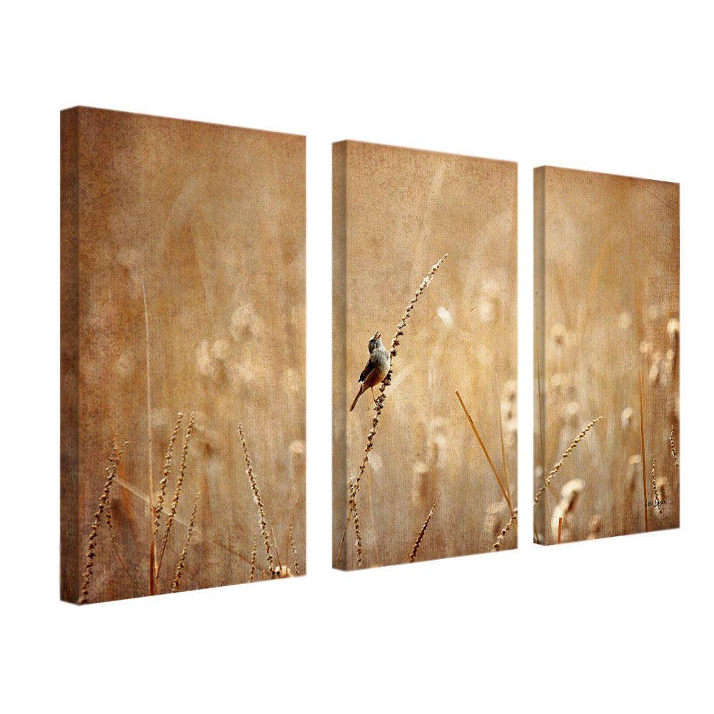 trademark fine art 16 in x 32 in bird 3 piece canvas art set