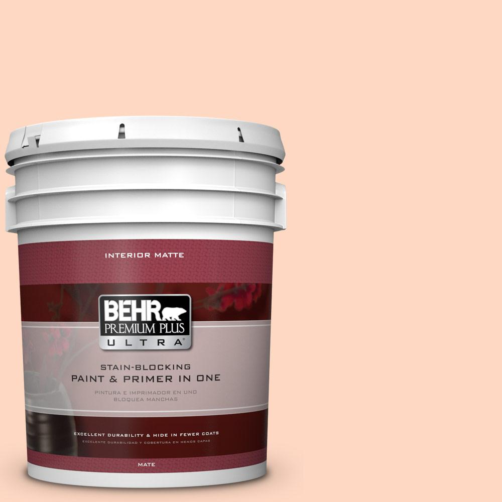 5 gal. #240A-2 Sunkissed Peach Flat/Matte Interior Paint