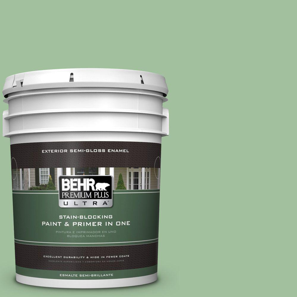 5-gal. #BIC-25 Spring Sprig Semi-Gloss Enamel Exterior Paint