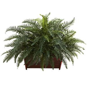 River Fern with Wood Planter