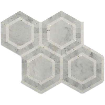 Zeta Thassos Polished Marble Tile - 6 in. x 6 in. Tile Sample
