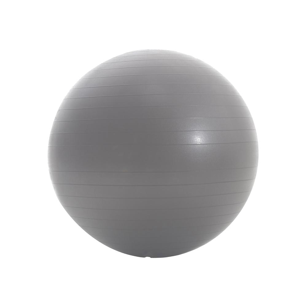 65 cm Anti Burst Fitness Ball
