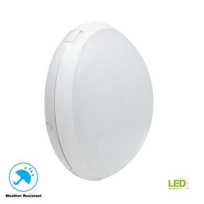 30-Watt White Outdoor LED Large Round Bulkhead