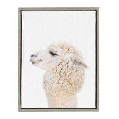 "Sylvie ""Animal Studio Alpaca Profile"" by Amy Peterson Framed Canvas Wall Art"