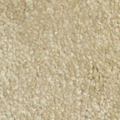 Carpet Sample - Sun Rise I - Color Starboard Texture 8 in. x 8 in.