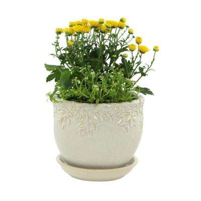 9.0 in. Ivy League White Ceramic Planter with Saucer
