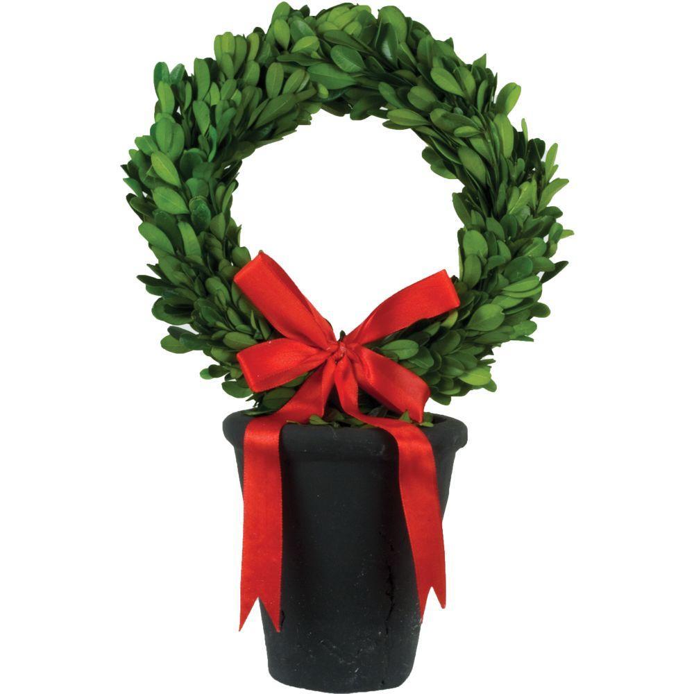 8 in. dia. Preserved Boxwood Wreath in Black Terracotta Pot
