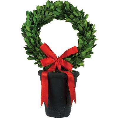 8 in. dia. Preserved Boxwood Wreath in Black Terracotta Pot