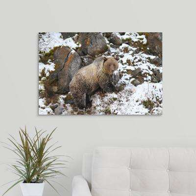 """Amongst the Rocks"" by  Brian Wolitski Canvas Wall Art"