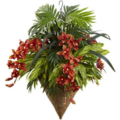 40 in. Mixed Tropical and Cymbidium Hanging Basket