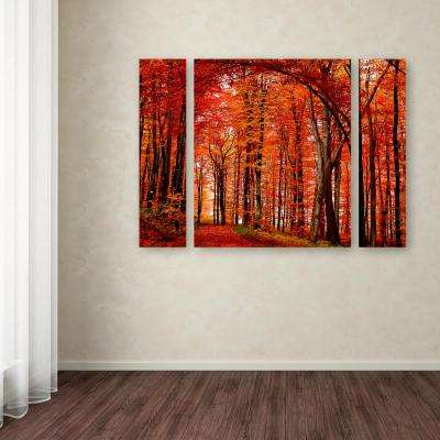 """30 in. x 41 in. """"The Red Way"""" by Philippe Sainte-Laudy Printed Canvas Wall Art"""