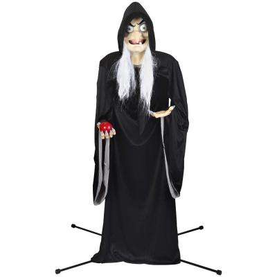 Life Size Animated KD-Snow White Old Witch-Disney