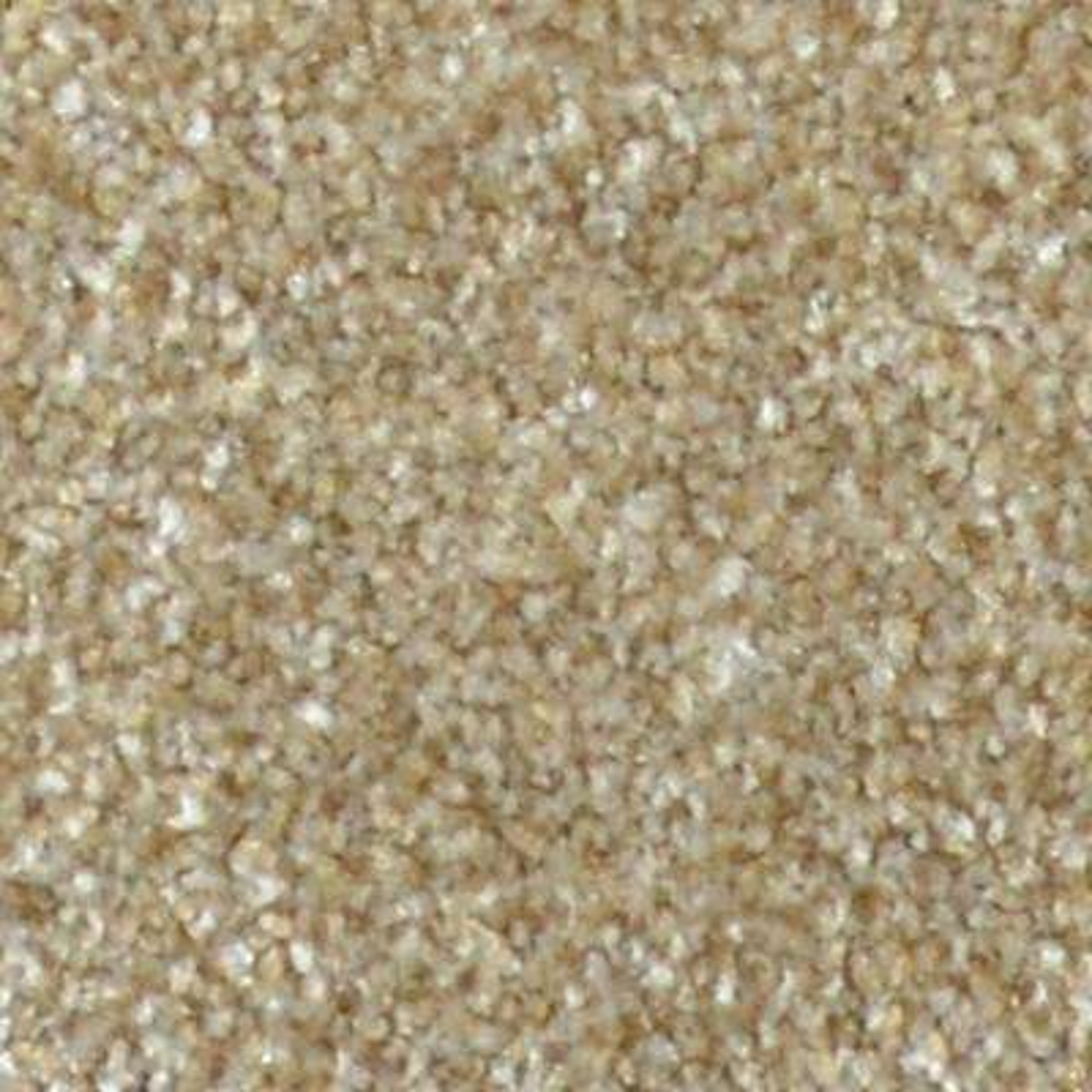 Carpet Sample - Harvest I - Color Grandfield Texture 8 in. x 8 in.