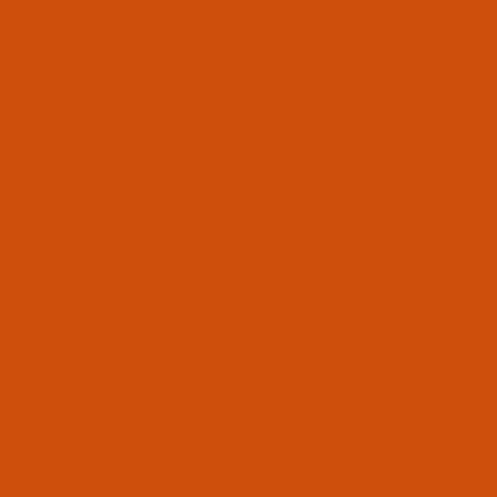 Burnt Orange Outdoor Fabric Spray Paint