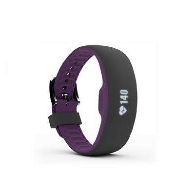 Plum Large with Extra Large Fitness Tracker