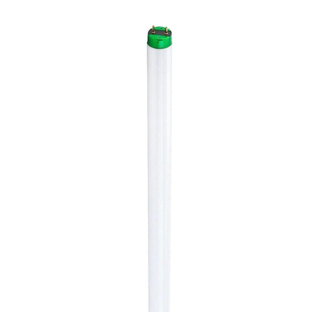 Philips 4 ft. T8 32-Watt Natural (5000K) Plus Alto HV Linear Fluorescent Light Bulb (30-Pack)