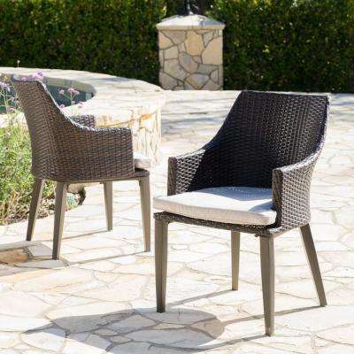 Ansley Multi-Brown Stationary Wicker Outdoor Dining Chair with Light Brown Cushions (2-Pack)