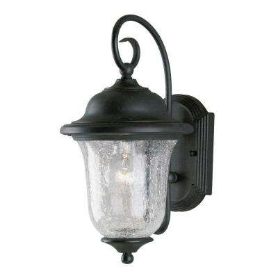 1-Light Vintage Bronze Steel Exterior Wall Lantern with Clear Crackle Glass