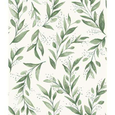 Olive Branch Paper Strippable Wallpaper (Covers 56 sq. ft.)